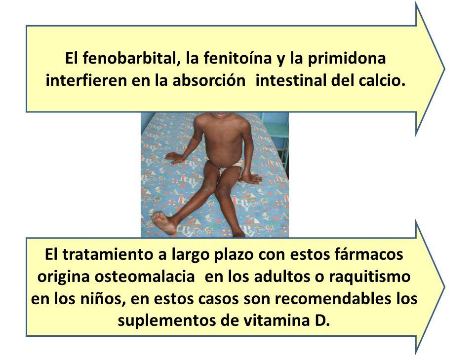 El fenobarbital, la fenitoína y la primidona interfieren en la absorción intestinal del calcio.