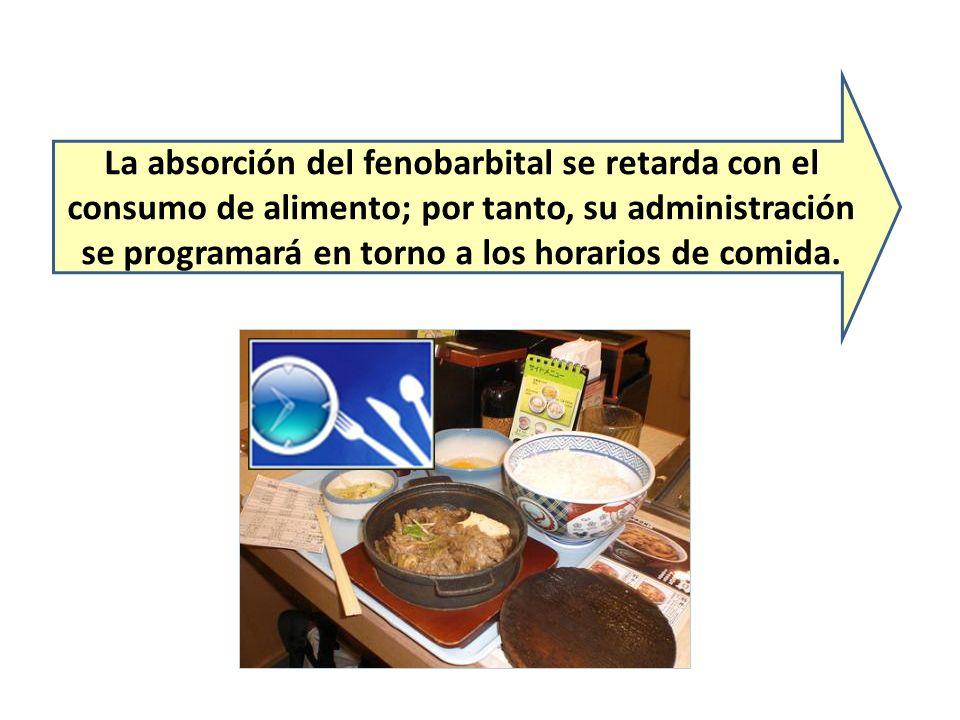 La absorción del fenobarbital se retarda con el consumo de alimento; por tanto, su administración se programará en torno a los horarios de comida.