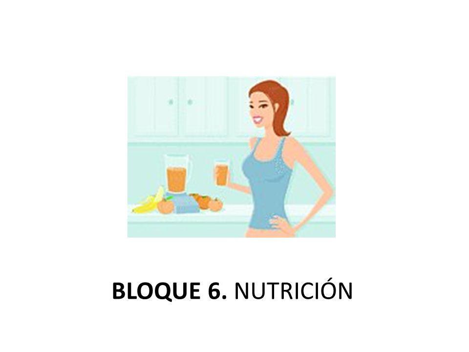 BLOQUE 6. NUTRICIÓN