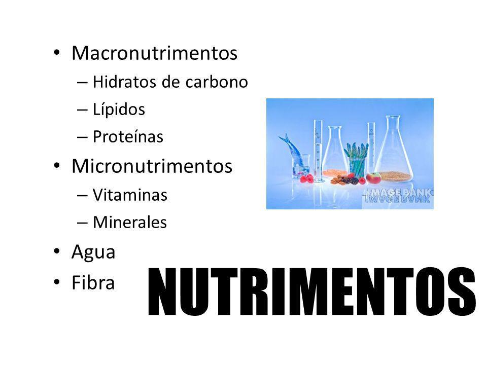 NUTRIMENTOS Macronutrimentos Micronutrimentos Agua Fibra