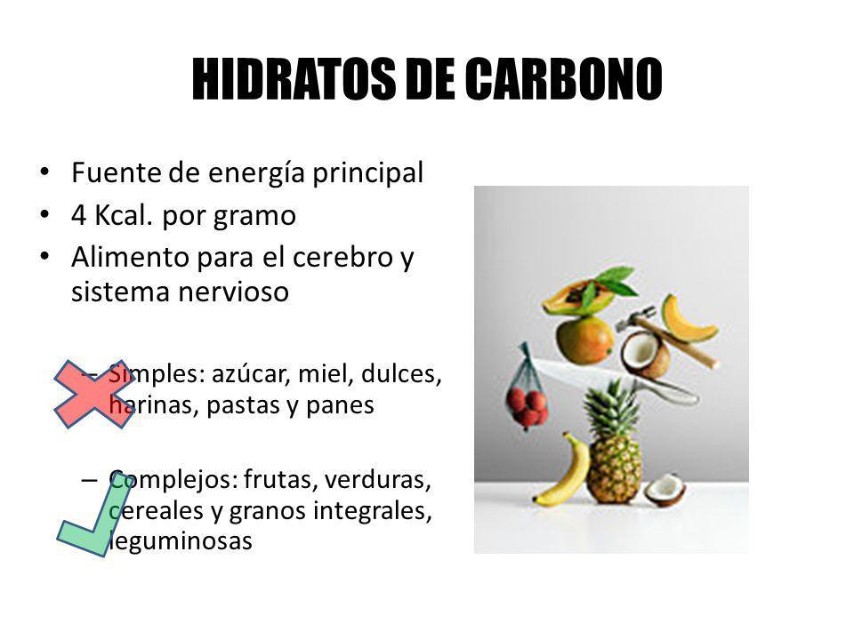 HIDRATOS DE CARBONO Fuente de energía principal 4 Kcal. por gramo