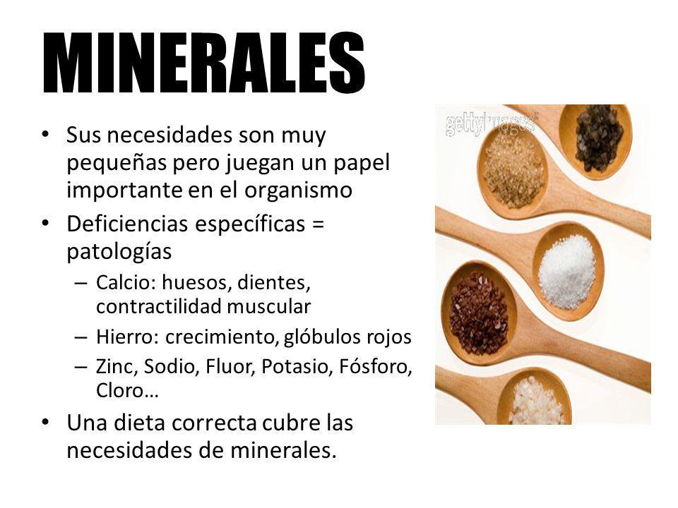 MINERALES Sus necesidades son muy pequeñas pero juegan un papel importante en el organismo. Deficiencias específicas = patologías.