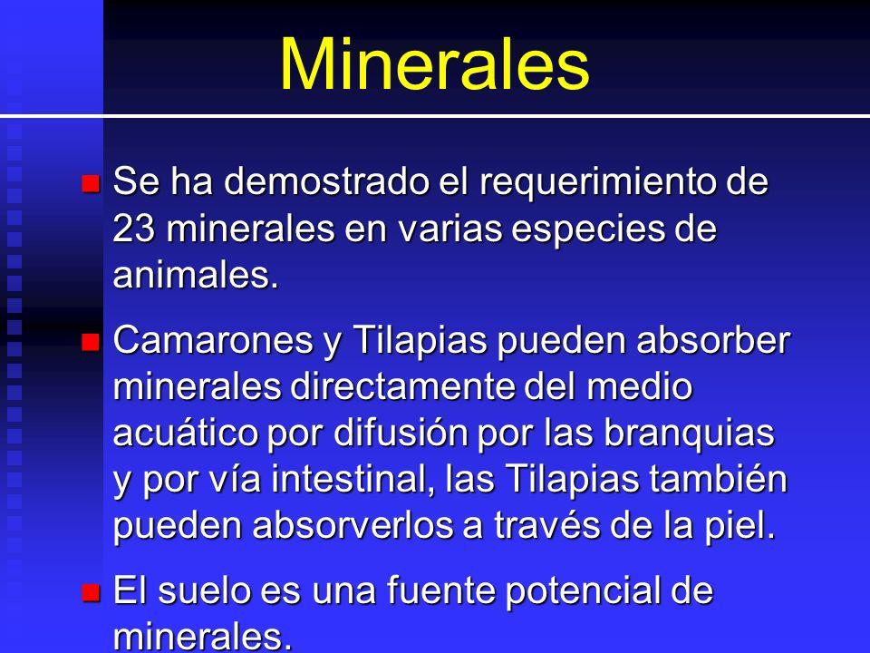 Minerales Se ha demostrado el requerimiento de 23 minerales en varias especies de animales.