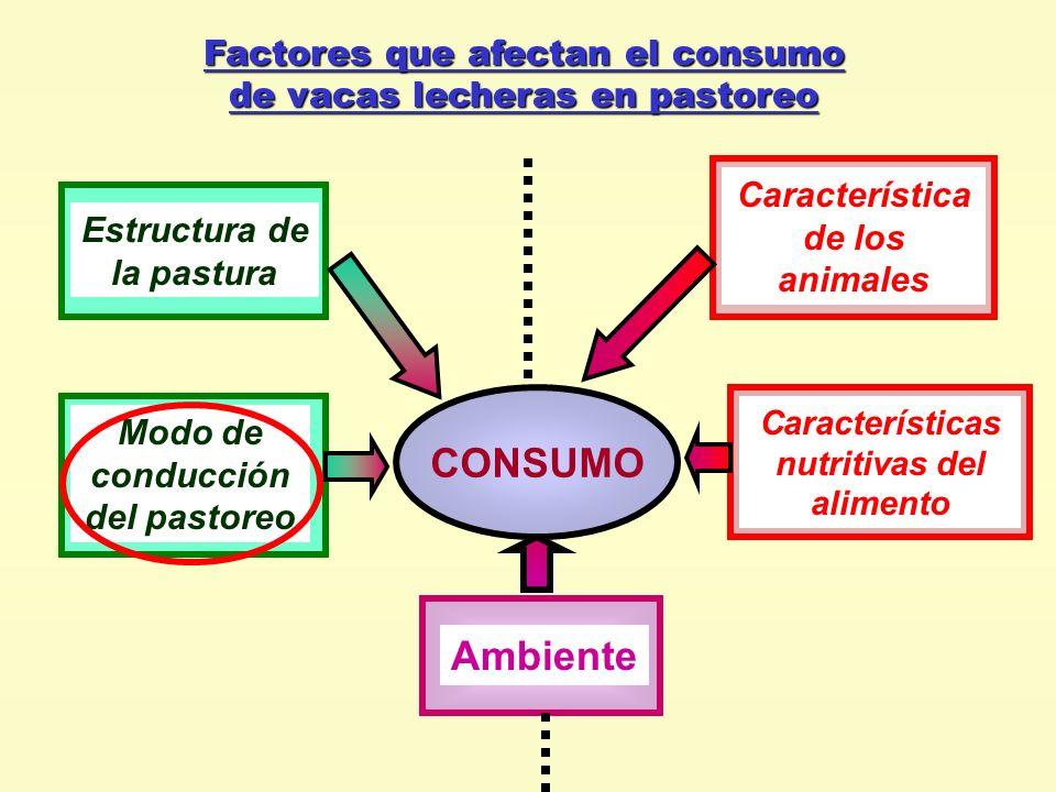 Factores que afectan el consumo de vacas lecheras en pastoreo