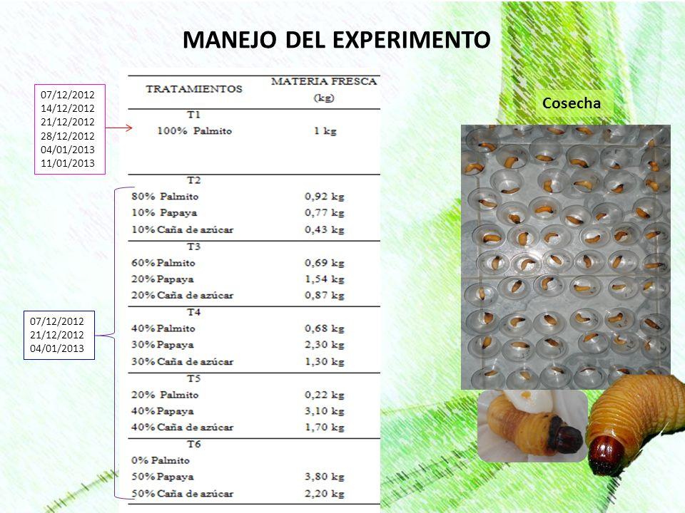 MANEJO DEL EXPERIMENTO