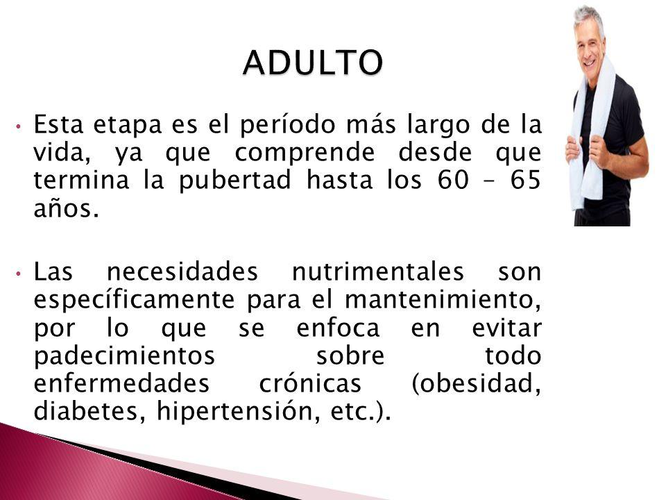 ADULTO Esta etapa es el período más largo de la vida, ya que comprende desde que termina la pubertad hasta los 60 – 65 años.