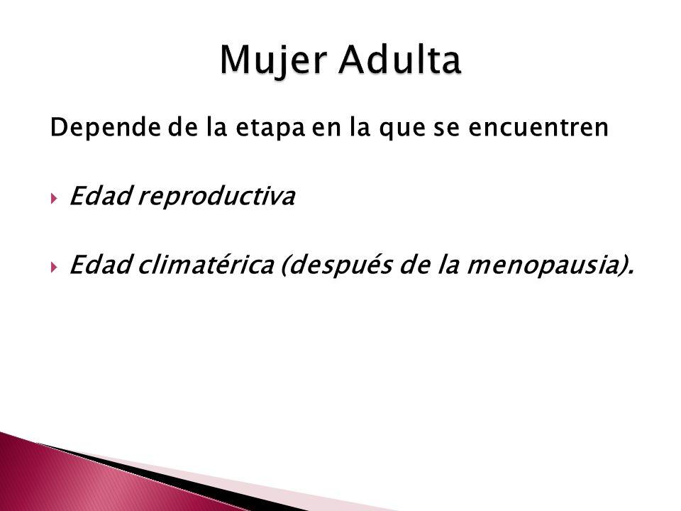 Mujer Adulta Depende de la etapa en la que se encuentren