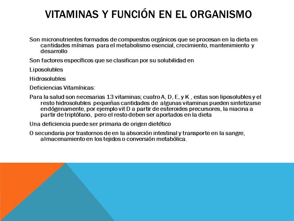 vitaminas y función en el organismo