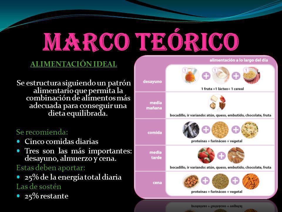 Marco teórico ALIMENTACIÓN IDEAL