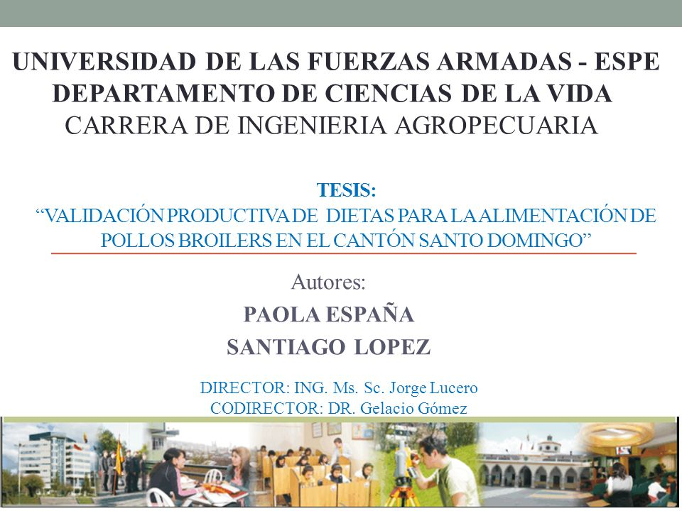 Autores: PAOLA ESPAÑA SANTIAGO LOPEZ