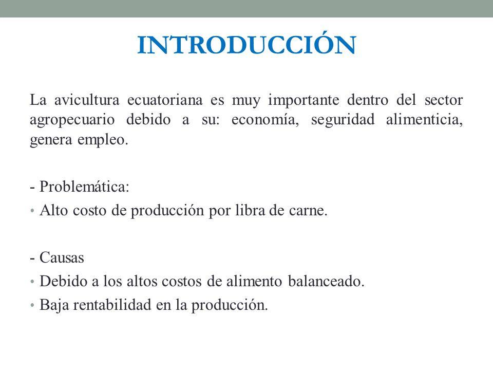 INTRODUCCIÓN La avicultura ecuatoriana es muy importante dentro del sector agropecuario debido a su: economía, seguridad alimenticia, genera empleo.