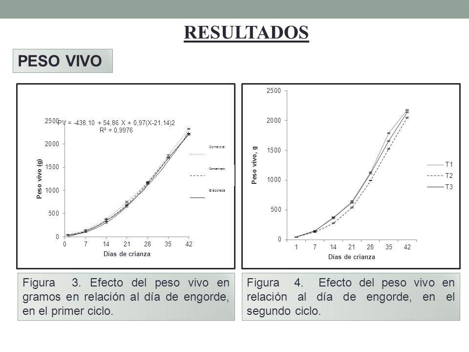RESULTADOS PESO VIVO. Figura 3. Efecto del peso vivo en gramos en relación al día de engorde, en el primer ciclo.