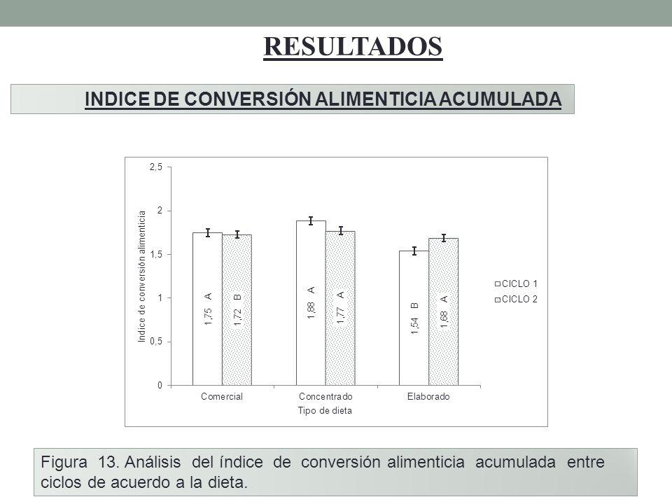 RESULTADOS INDICE DE CONVERSIÓN ALIMENTICIA ACUMULADA