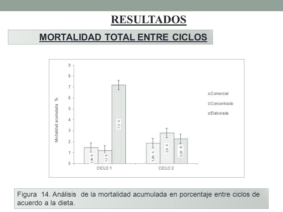 RESULTADOS MORTALIDAD TOTAL ENTRE CICLOS