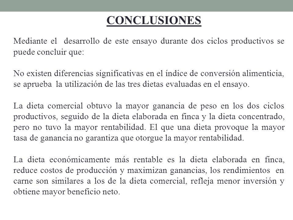 CONCLUSIONES Mediante el desarrollo de este ensayo durante dos ciclos productivos se puede concluir que: