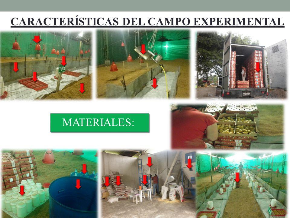 CARACTERÍSTICAS DEL CAMPO EXPERIMENTAL