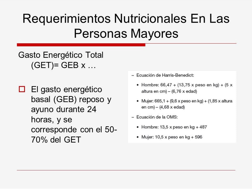 Requerimientos Nutricionales En Las Personas Mayores