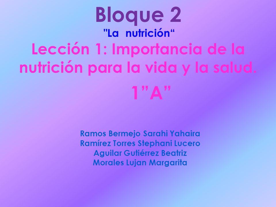 Bloque 2 La nutrición Lección 1: Importancia de la nutrición para la vida y la salud. 1 A Ramos Bermejo Sarahi Yahaira.