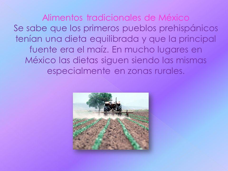 Alimentos tradicionales de México