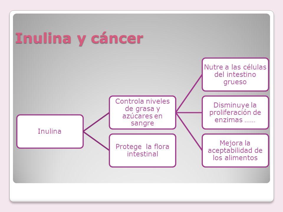 Inulina y cáncer Inulina