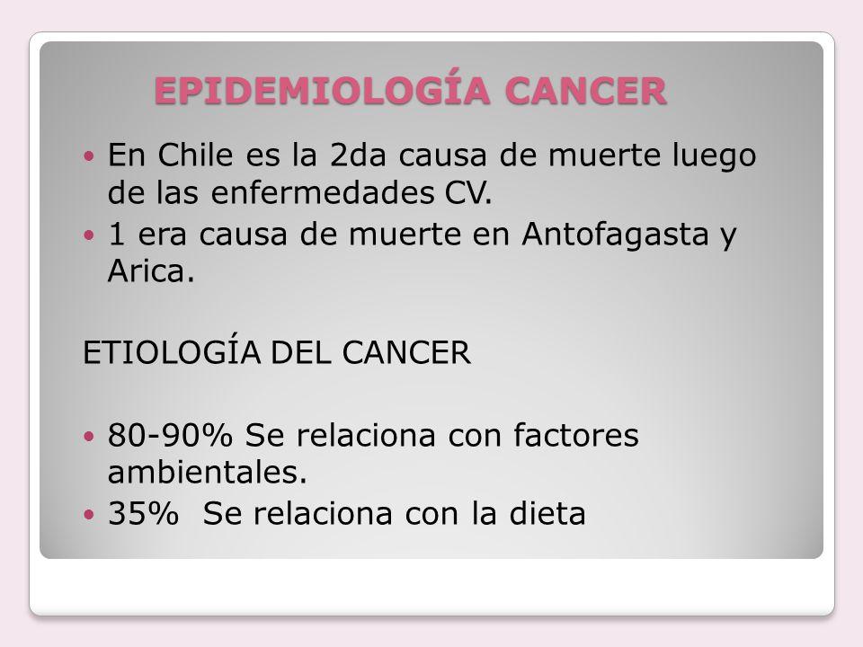EPIDEMIOLOGÍA CANCER En Chile es la 2da causa de muerte luego de las enfermedades CV. 1 era causa de muerte en Antofagasta y Arica.