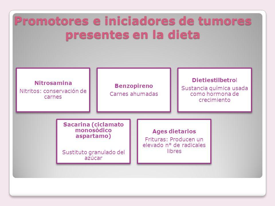 Promotores e iniciadores de tumores presentes en la dieta