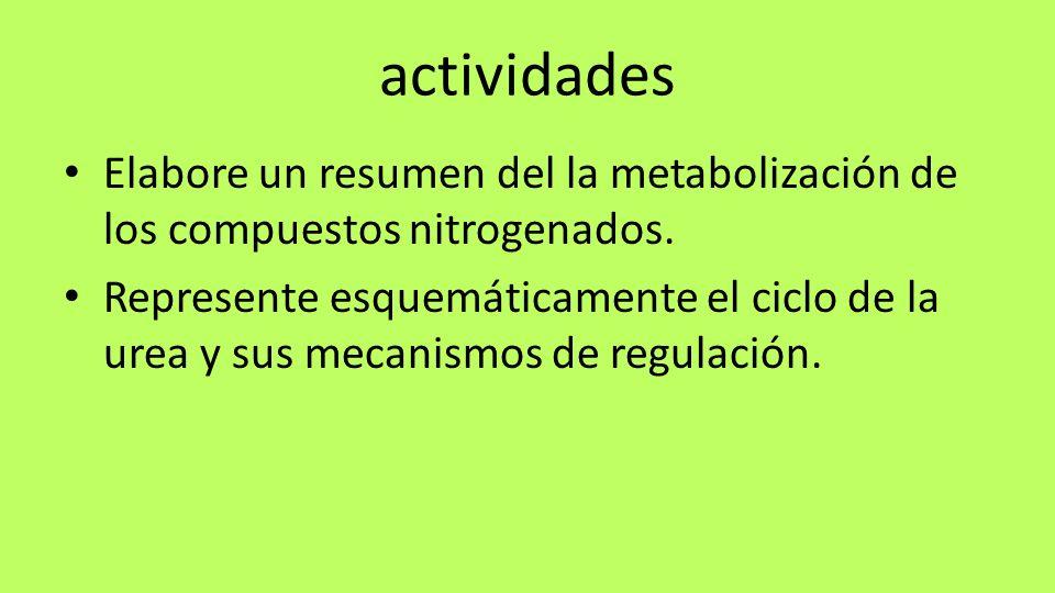 actividades Elabore un resumen del la metabolización de los compuestos nitrogenados.