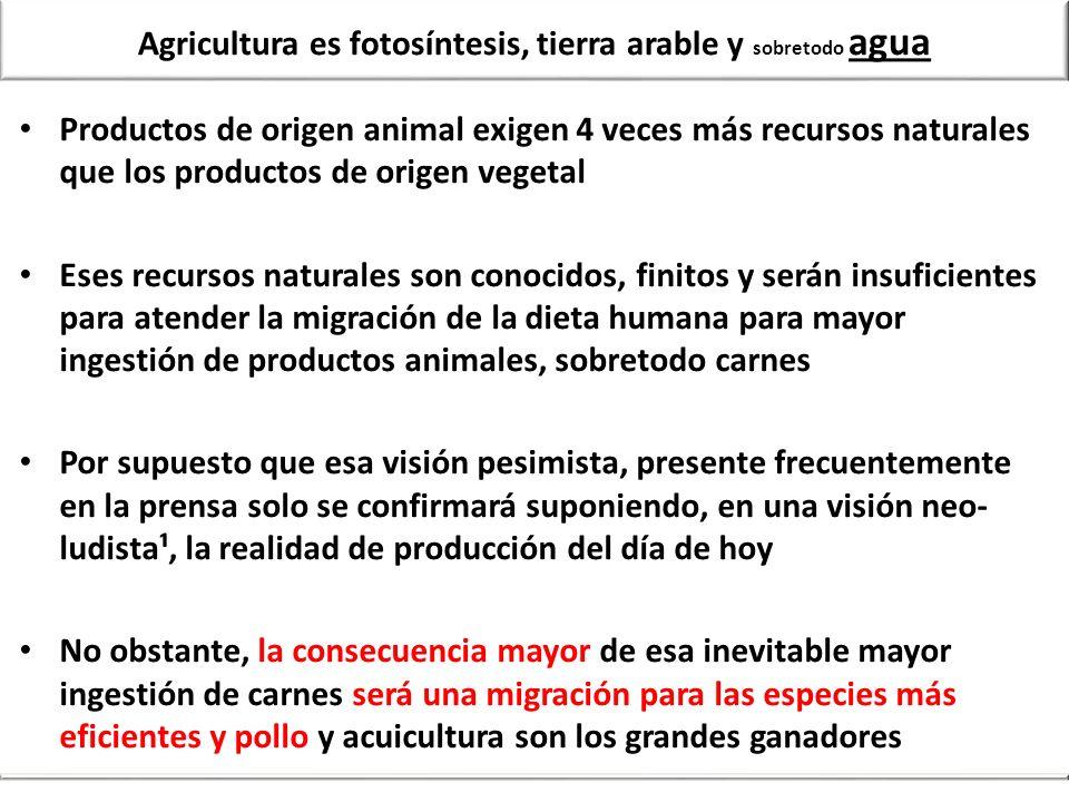 Agricultura es fotosíntesis, tierra arable y sobretodo agua