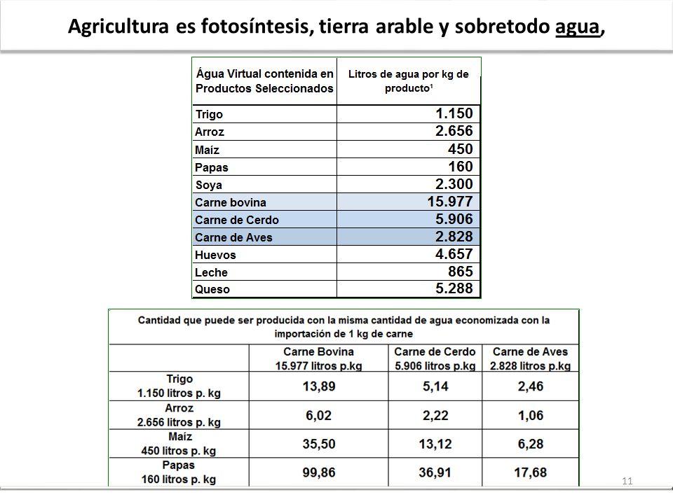 Agricultura es fotosíntesis, tierra arable y sobretodo agua,
