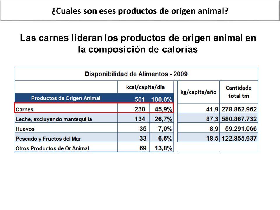 ¿Cuales son eses productos de origen animal