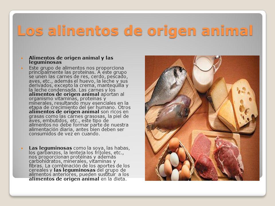 Los alinentos de origen animal