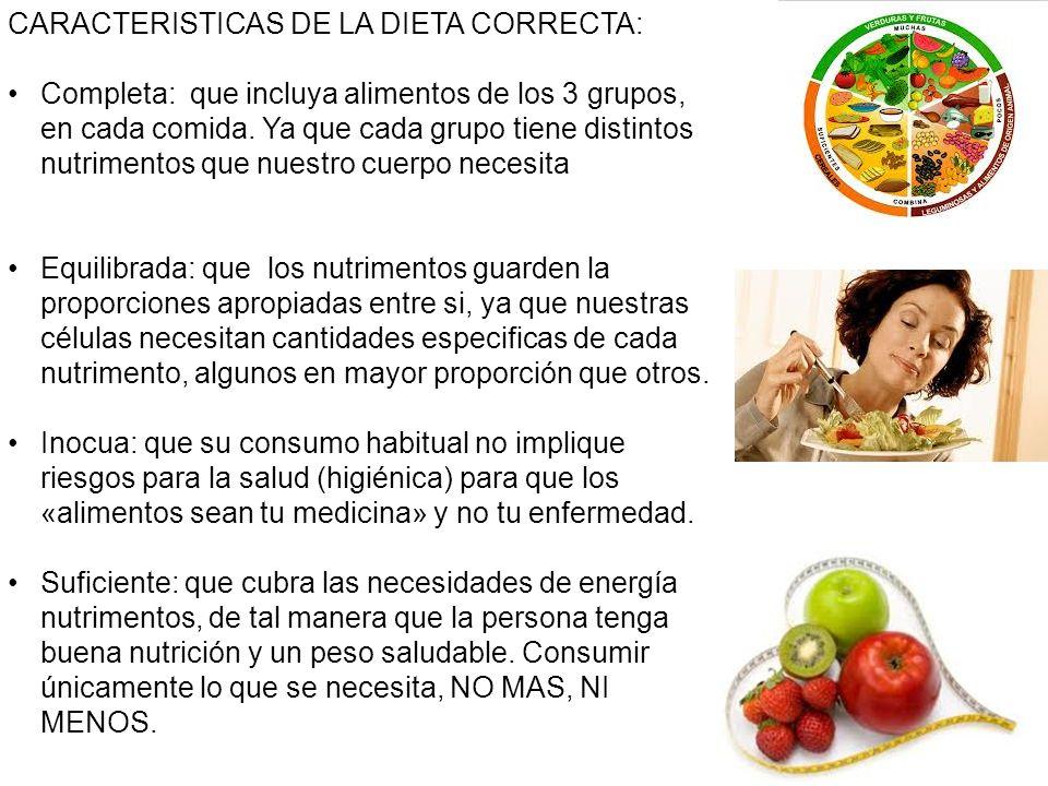 CARACTERISTICAS DE LA DIETA CORRECTA: