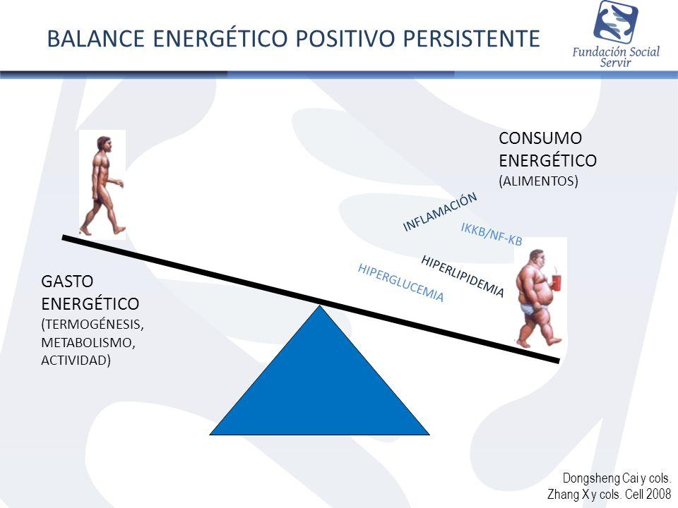 BALANCE ENERGÉTICO POSITIVO PERSISTENTE