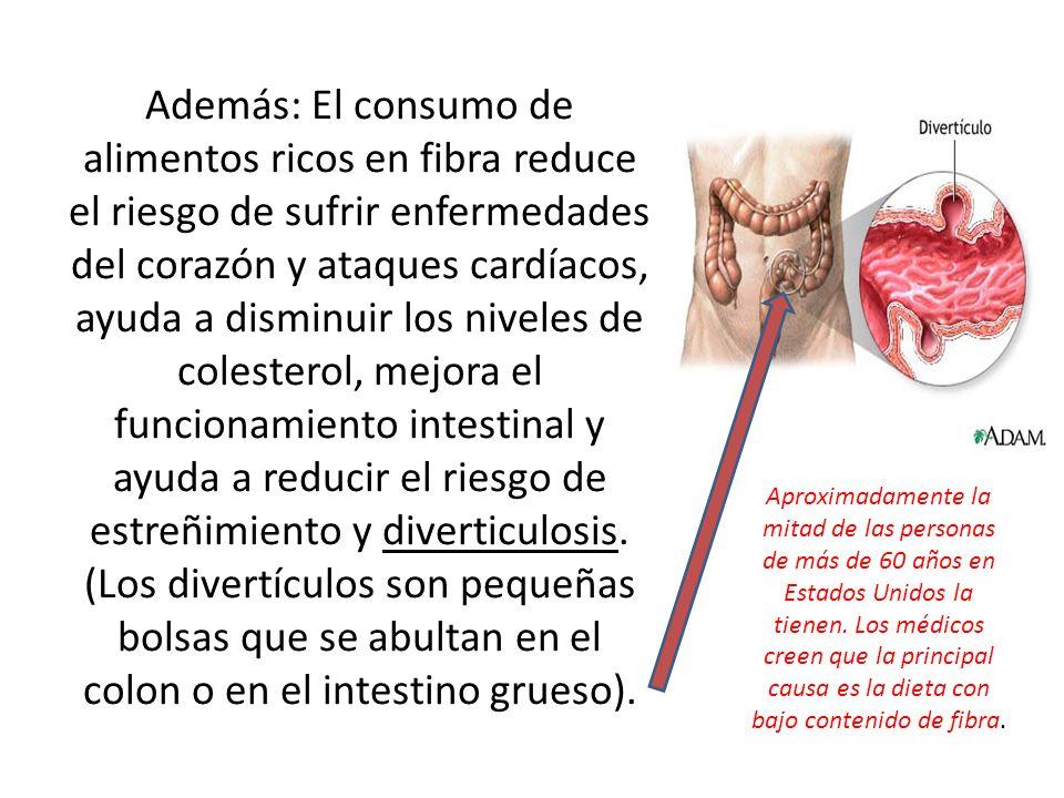 Además: El consumo de alimentos ricos en fibra reduce el riesgo de sufrir enfermedades del corazón y ataques cardíacos, ayuda a disminuir los niveles de colesterol, mejora el funcionamiento intestinal y ayuda a reducir el riesgo de estreñimiento y diverticulosis. (Los divertículos son pequeñas bolsas que se abultan en el colon o en el intestino grueso).