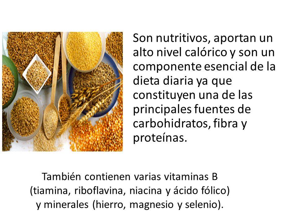 Son nutritivos, aportan un alto nivel calórico y son un componente esencial de la dieta diaria ya que constituyen una de las principales fuentes de carbohidratos, fibra y proteínas.