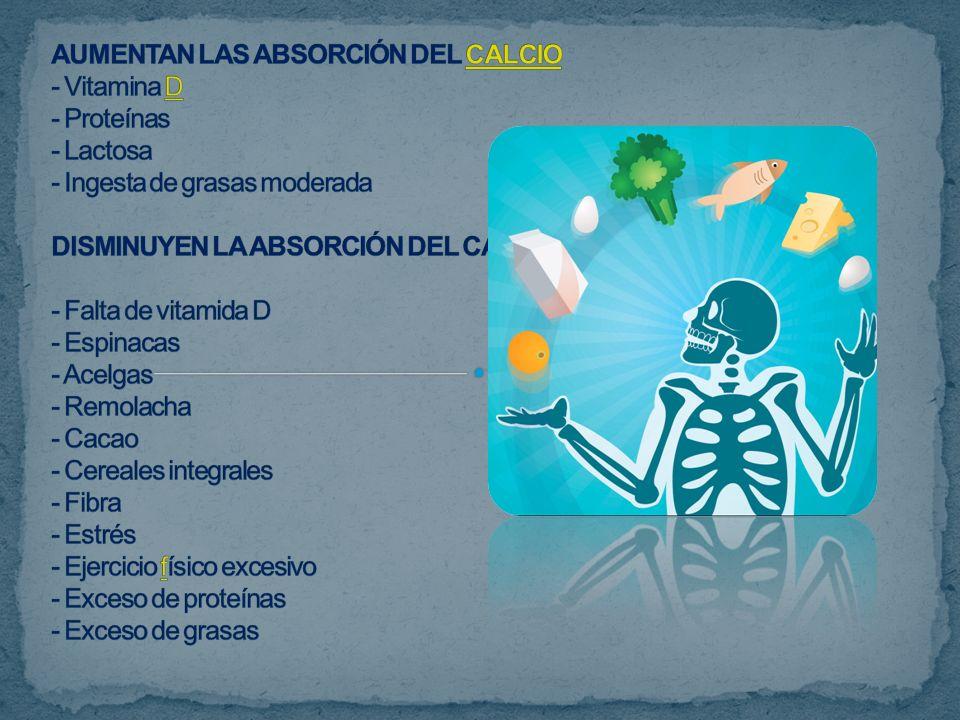 AUMENTAN LAS ABSORCIÓN DEL CALCIO - Vitamina D - Proteínas - Lactosa - Ingesta de grasas moderada DISMINUYEN LA ABSORCIÓN DEL CALCIO - Falta de vitamida D - Espinacas - Acelgas - Remolacha - Cacao - Cereales integrales - Fibra - Estrés - Ejercicio físico excesivo - Exceso de proteínas - Exceso de grasas