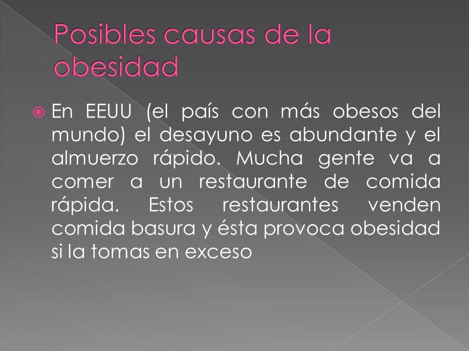 Posibles causas de la obesidad