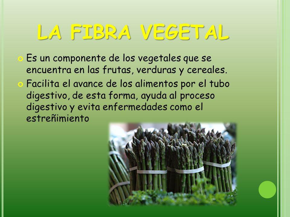 LA FIBRA VEGETAL Es un componente de los vegetales que se encuentra en las frutas, verduras y cereales.