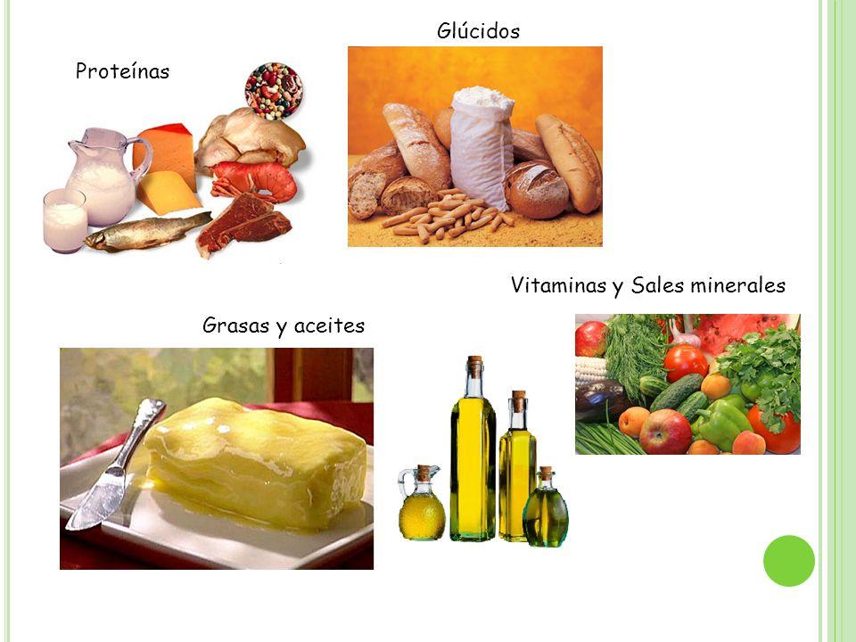 Glúcidos Proteínas Vitaminas y Sales minerales Grasas y aceites
