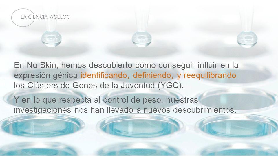 los Clústers de Genes de la Juventud (YGC).