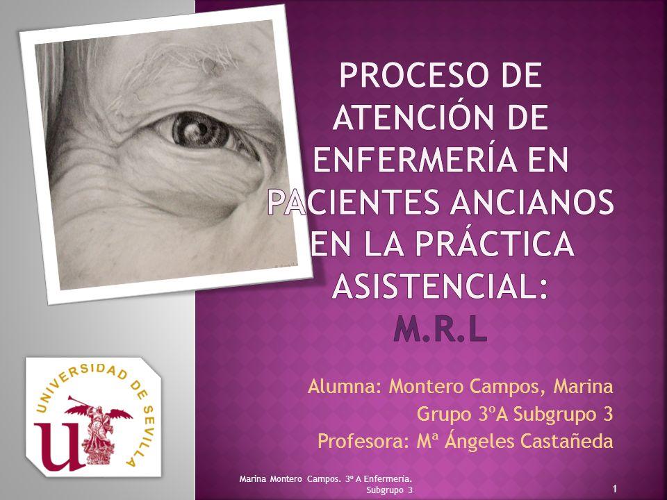 Proceso de Atención de Enfermería en pacientes ancianos en la práctica asistencial: M.R.L