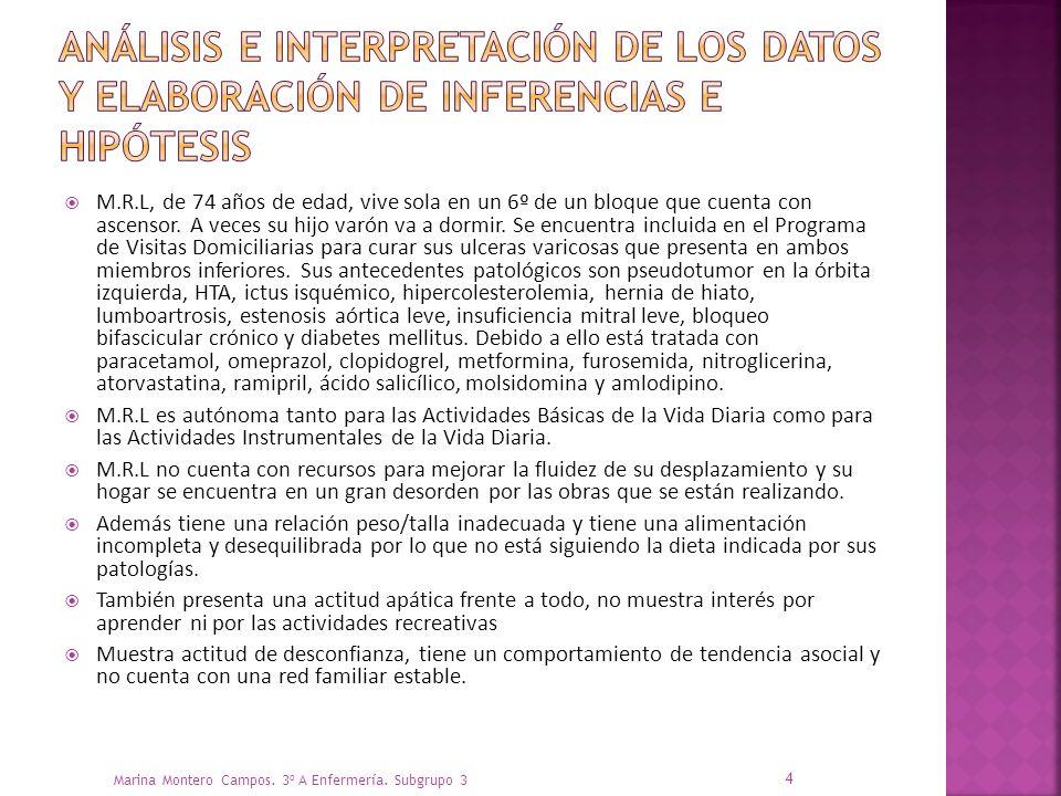 Análisis e interpretación de los datos y elaboración de inferencias e hipótesis