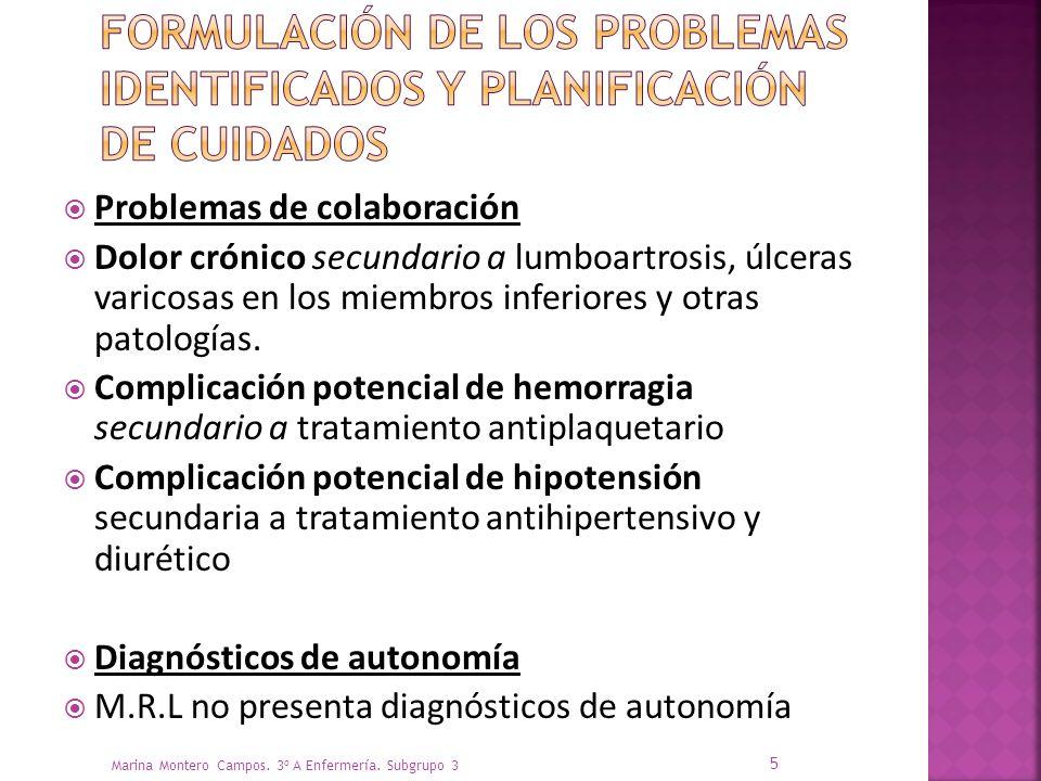Formulación de los problemas identificados y planificación de cuidados