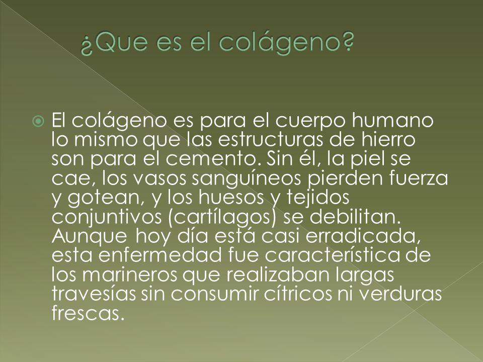 ¿Que es el colágeno