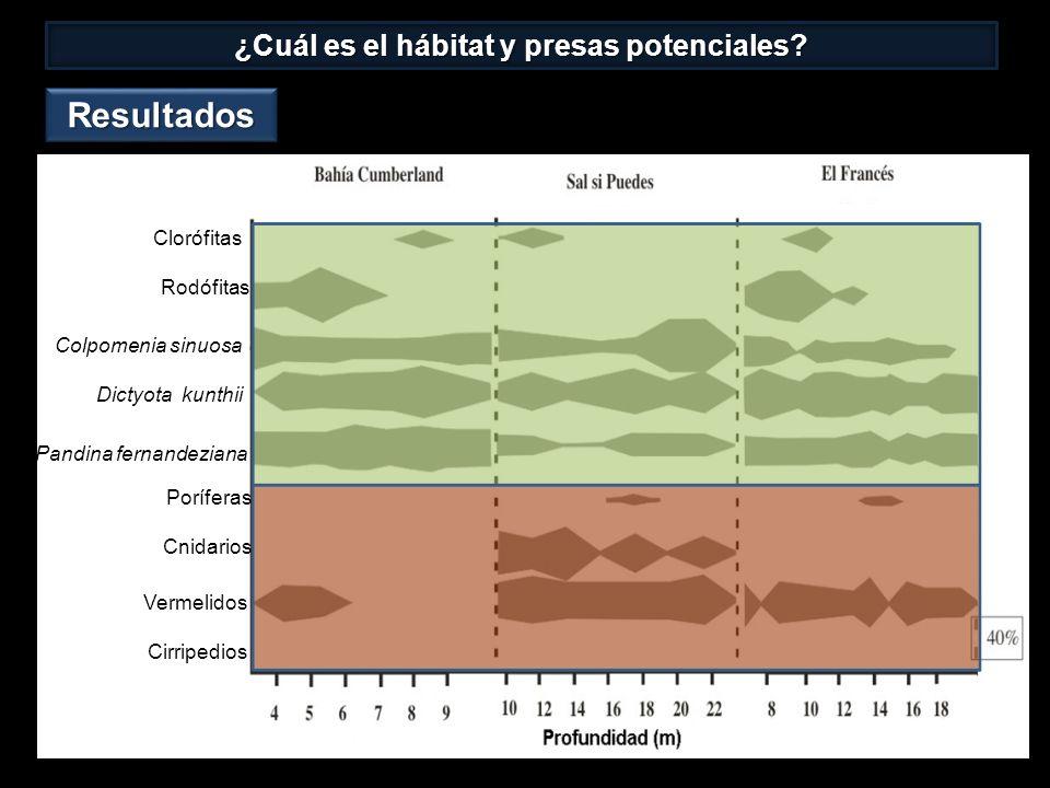 ¿Cuál es el hábitat y presas potenciales