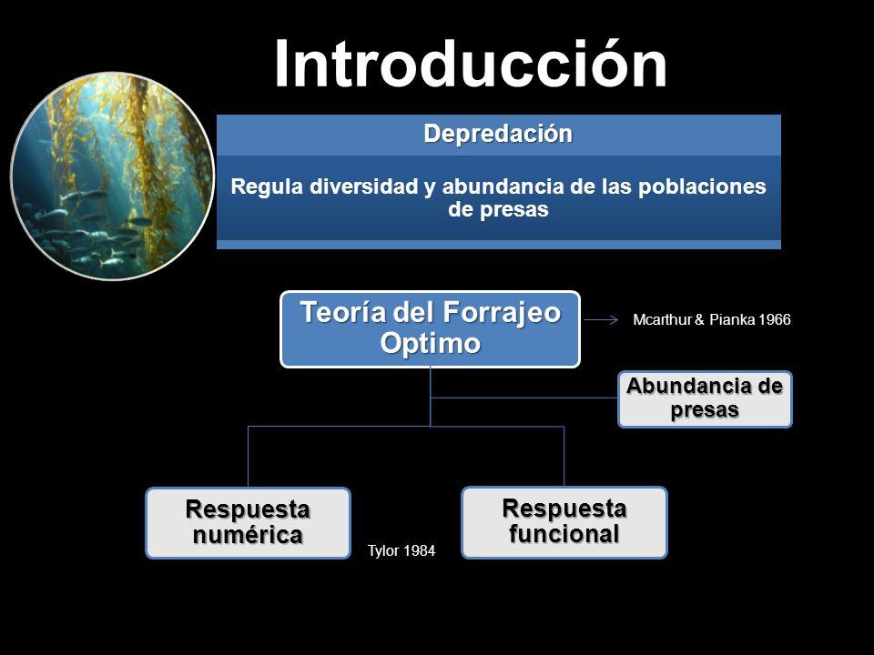 Regula diversidad y abundancia de las poblaciones de presas