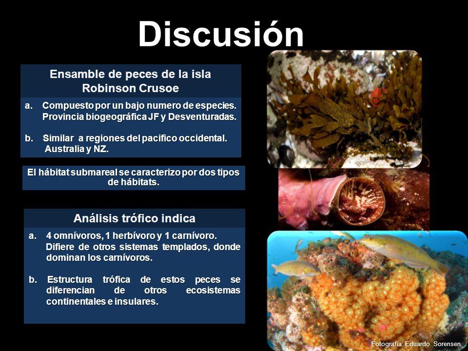 Discusión Ensamble de peces de la isla Robinson Crusoe