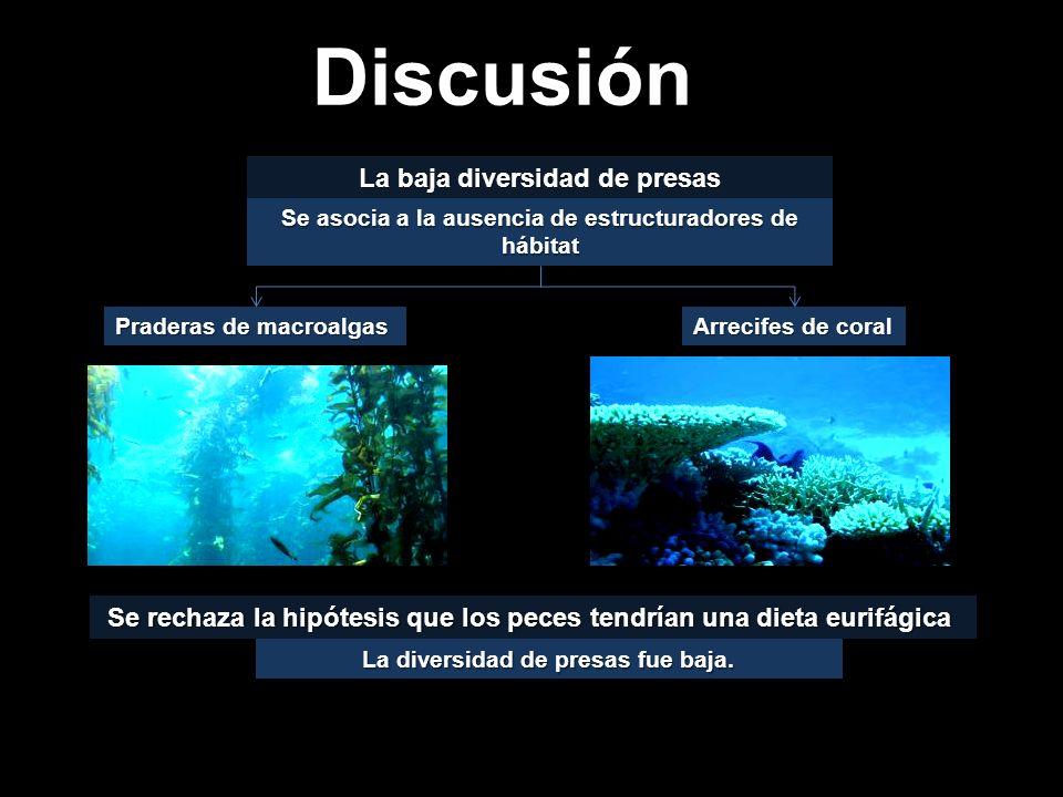 Discusión La baja diversidad de presas