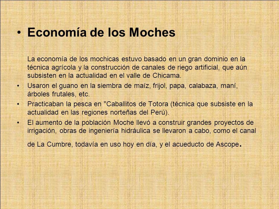 Economía de los Moches La economía de los mochicas estuvo basado en un gran dominio en la técnica agrícola y la construcción de canales de riego artificial, que aún subsisten en la actualidad en el valle de Chicama.