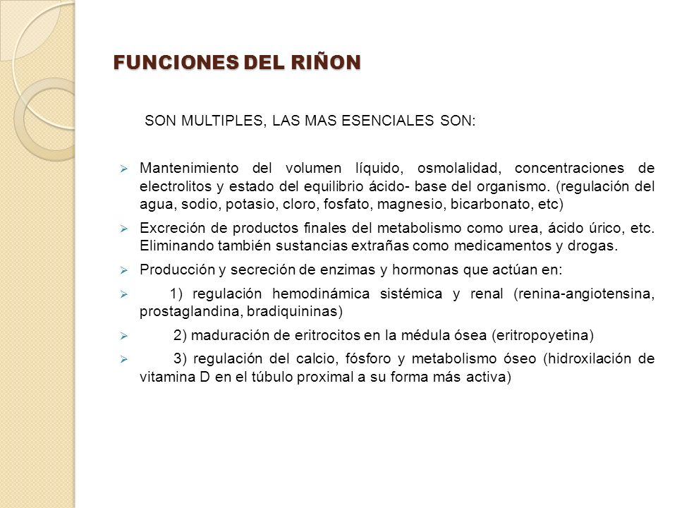 FUNCIONES DEL RIÑON SON MULTIPLES, LAS MAS ESENCIALES SON: